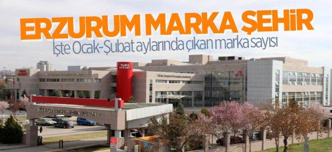 Erzurum 2 ayda 47 marka çıkardı