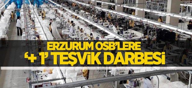Erzurum OSB'lere '+ 1' teşvik engeli