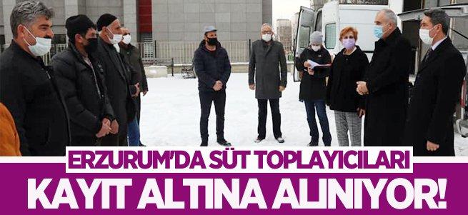 Erzurum'da süt toplayıcıları kayıt altına alınıyor