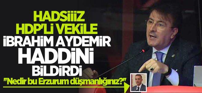 HDP'li hadsiz vekile İbrahim Aydemir haddini bildirdi