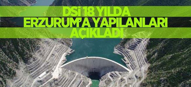 DSİ 18 yılda Erzurum'a yaplanları açıkladı