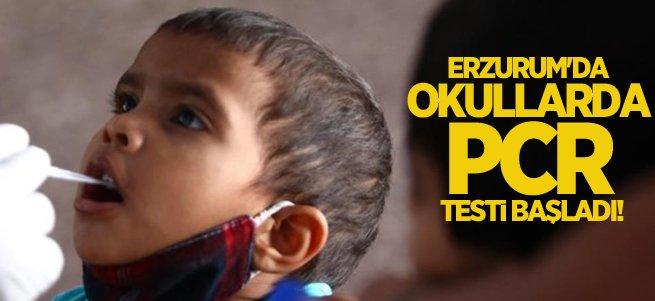 Erzurum'da okullarda PCR testi dönemi başladı!
